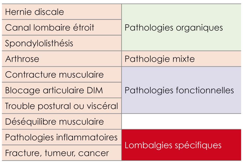 Mdk - Lombalgie et kinésithérapie